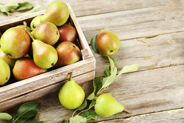 Wenn man die leckere Birnenernte anschaut, bekommt man doch Lust ,diese leckere Frucht auch im Winter zu genießen.