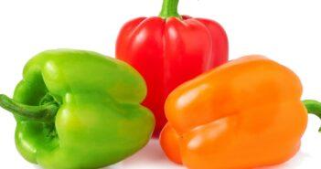 Paprika einlegen & dem Sommer konservieren