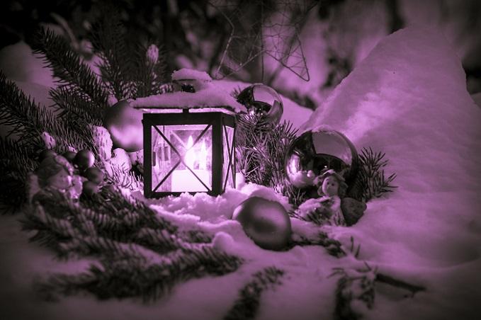Wer den Garten weihnachtlich dekorieren möchte, der muss nicht erst eine ganze Reihe von Neuanschaffungen tätigen. (#01)