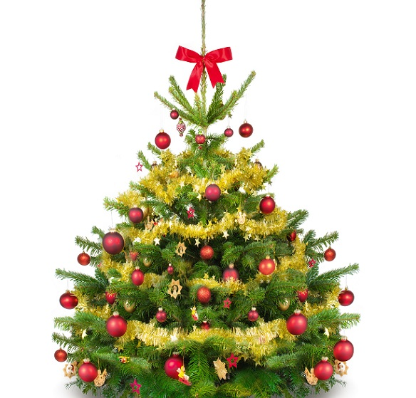 Beim Weihnachtsbaum Schmücken kommt es jedoch nicht nur auf die Kugeln und Anhänger sowie die Girlanden bzw. Perlenketten an, sondern auch auf den Baum an sich. Wichtig ist, dass dieser direkt, wenn er bei Ihnen zu Hause angekommen ist, mit Wasser versorgt wird. (#04)