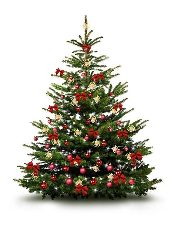 Es gibt eine Vielzahl an unterschiedlichen Geschmäckern, was den Christbaum betrifft. Die einen lieben es traditionell und natürlich, für die anderen kann es gar nicht genügend Glamour und Glitzer am Baum geben. (#01)