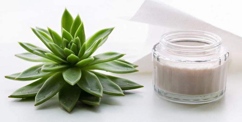 Pflegendes Serum mit dem Hauptbestandteil Aloe Vera ist wie ein Blatt dieser Pflanze geformt. (#04)