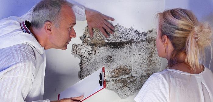 Schimmel im Schlafzimmer: 13 Tipps, die kein Handwerker geben würde ( Foto: Shutterstock-PPC Photography Cologne )