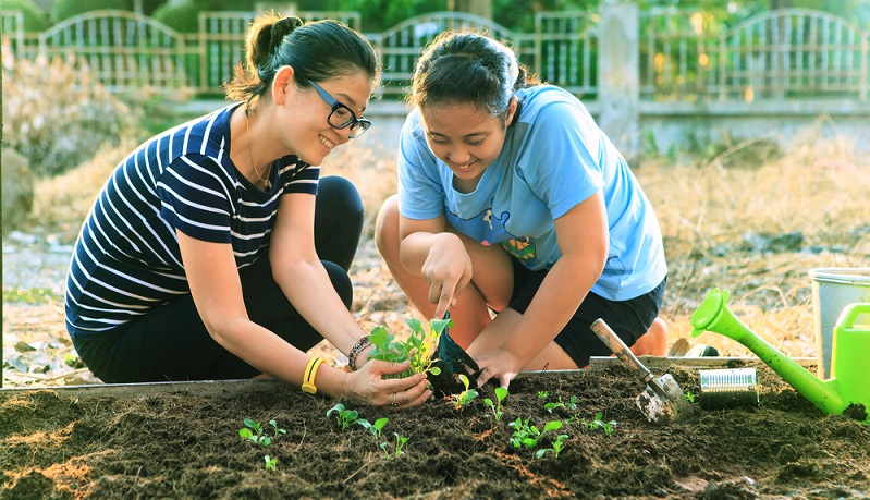 Leckeres Biogemüse aus dem eigenen Garten. ( Foto: Shutterstock-stockphoto mania )